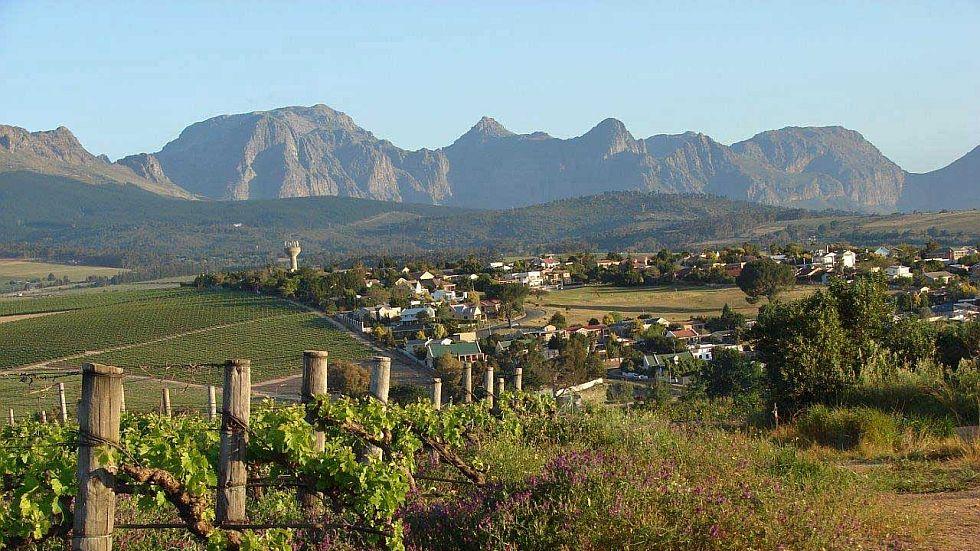 Half Day Wine Tour Stellenbosch